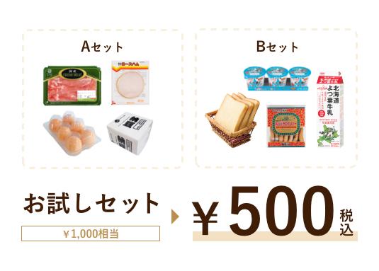 お試しセット(Aセット・Bセット)1,000円相当が500円(税込)
